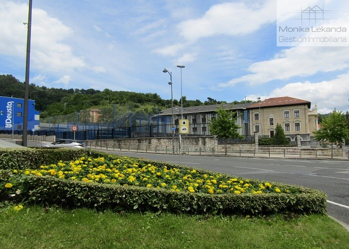 Deusto Universidad__m
